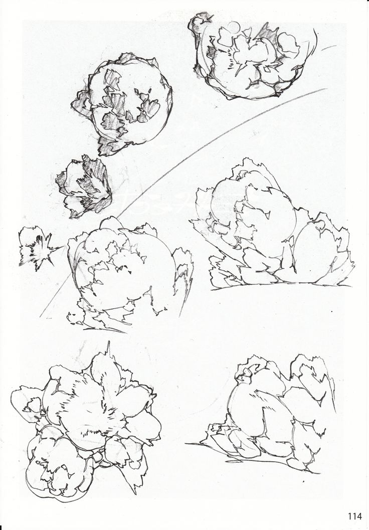 """CATSUKA - Somes pages of """"Deadwood Designs"""" dojin..."""
