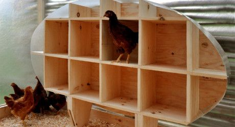 How to make a wooden barrel nesting box for your chickens