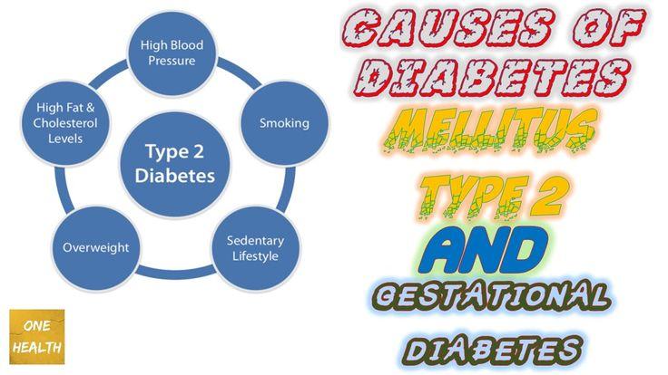 Causes of Diabetes mellitus  Type 2 And Gestational diabetes - One Health