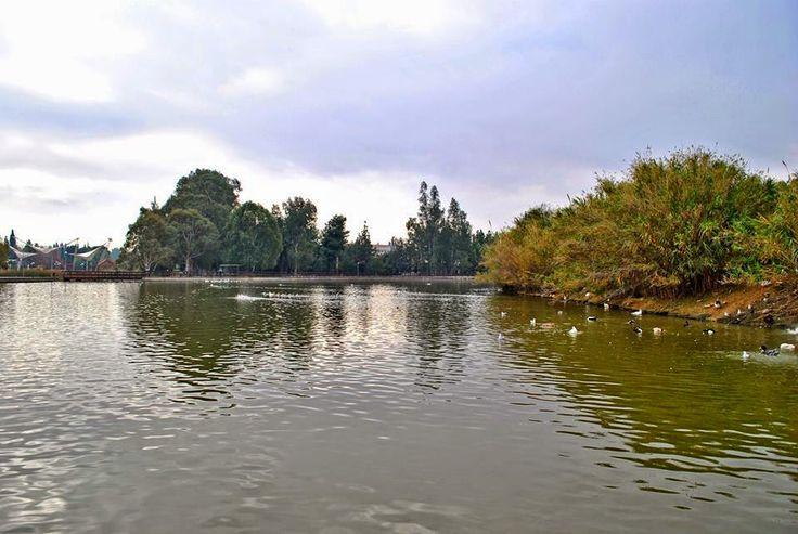"""εν πλω σημειώσεις  φωτογραφίας : Το πολύπαθο """"πάρκο Τρίτση"""",  αντιστέκεται στην φθο..."""
