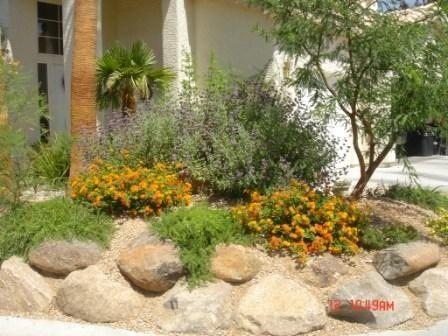 desert landscaping ideas high