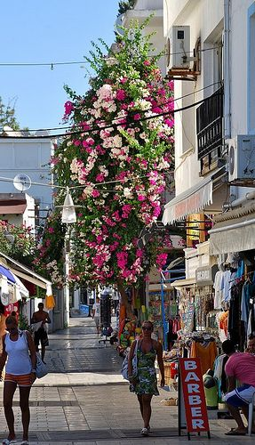 Turkey - Bodrum,
