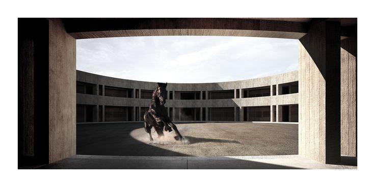 FURIA_ Centro Equestre ad Anghiari. Alessio Piomboni