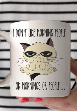 I Don't Like Morning People or Mornings Grumpy Cat Novelty Mug