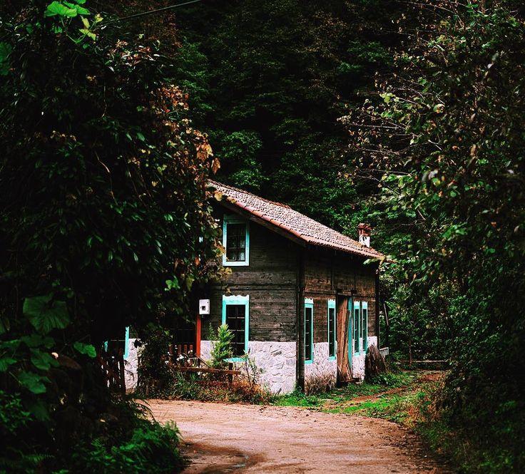 Rize-Çamlıhemşin-Şenyuva Köyü