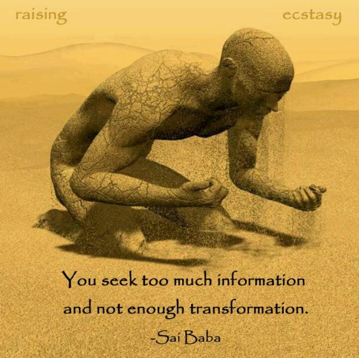 Sometimes experiencing is more important than understanding.