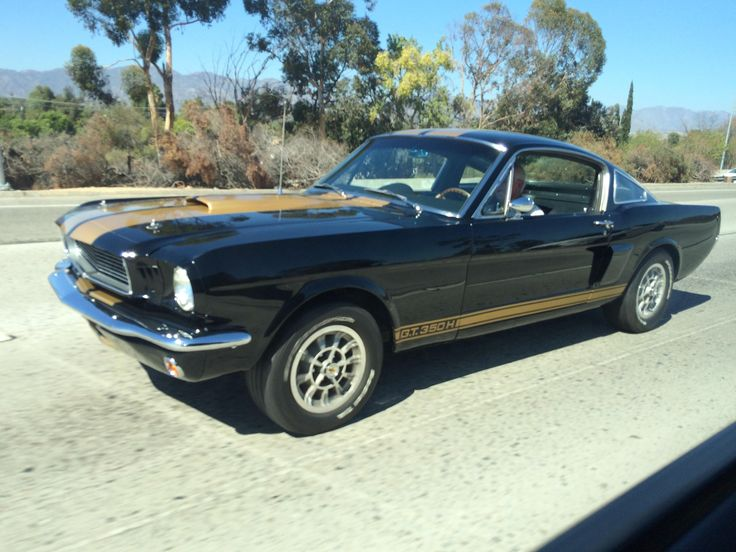 """[Shelby GT350H] '66 """"Rent-A-Racer""""- Los Angeles CA #carspotting #cars #car #carporn #supercar #carspotter #supercars"""