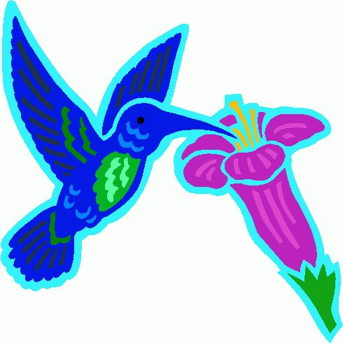 40 best hummingbird clipart images on pinterest hummingbird rh pinterest com hummingbird clip art stencil hummingbird clipart black and white