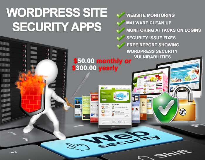 Website Security is an important issue to be dealt with since there are always a bevy of malicious individuals and organizations whose sole purpose is thievery of personal data such as e-mail addresses, credit card numbers, account numbers, and passwords.