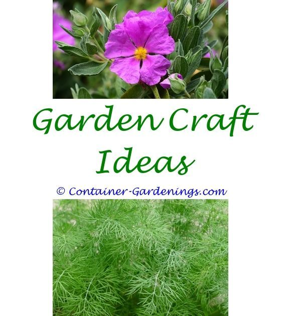 Simple Front Garden Idea Winter Kitchen Garden India Ideas Garden