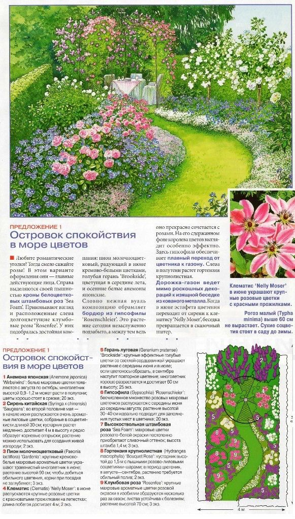 154 best Garden Layouts and Planting Schemas images on Pinterest