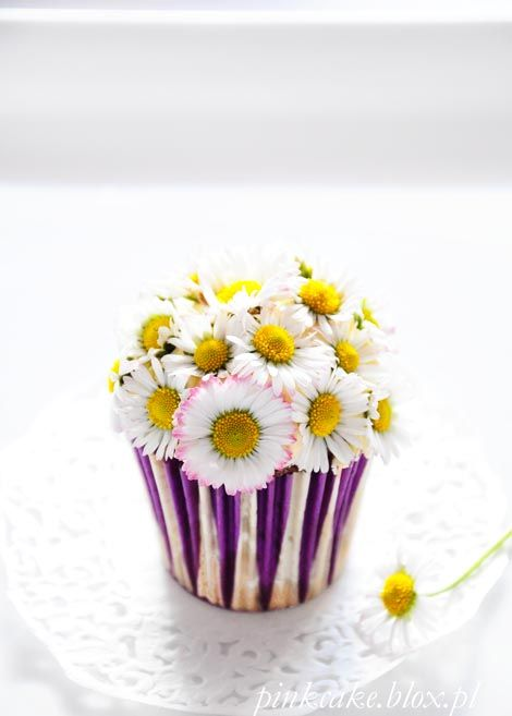daisies cupcake