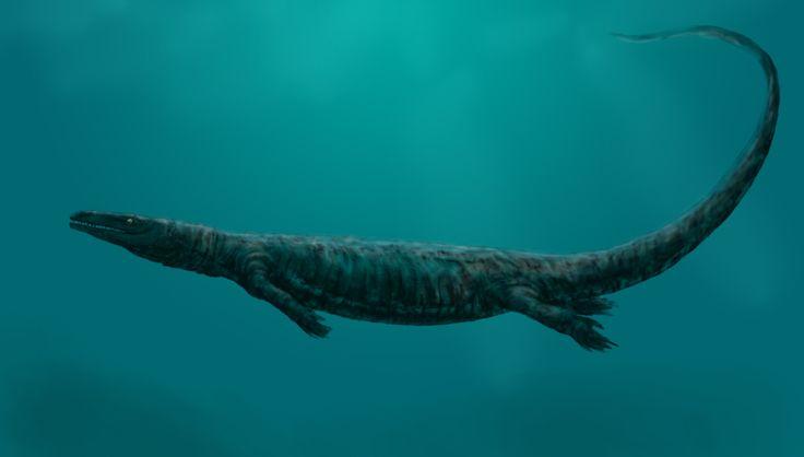 Aigialosaurus bucchichi; Late Cretaceous; Discovered by Kornhuber, 1901