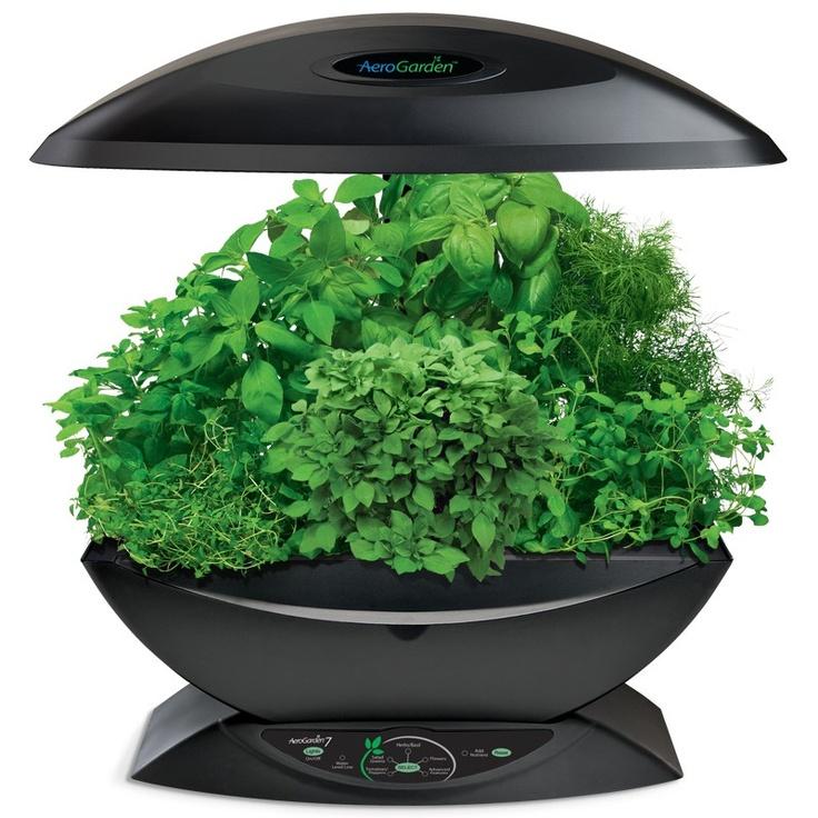 Aerogarden 7 Black With Images Herbs Indoors Indoor 400 x 300