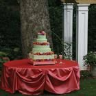 Linen Tablecloth Rentals, Wedding Table Runners, Tables Accessories