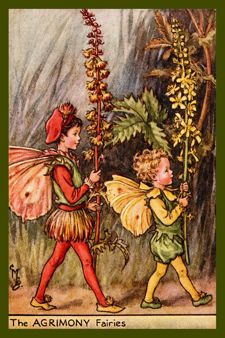 The Agrimony Fairies by Cicely Mary Barker from the 1920s. Quilt Block of vintage fairy image printed on cotton. Ready to sew.  Single 4x6 block $4.95. Set of 4 blocks with pattern $17.95.