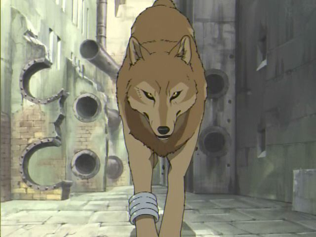 Girl Rain Toboe Wolfs