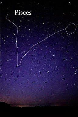 Pisces constellation | Tattoo | Pinterest