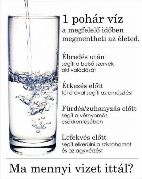 A víz ivás naponta érje el a 3 litert. Ez segíti a méregtelenítést, a szervezet működését, gyorsítja az anyagcserét. Megszünik a fejfájás, eltűnnek a... http://testunk.e-goes.com/viz-ivas/
