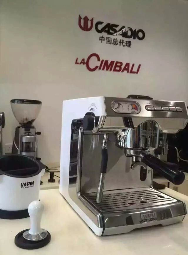 Welhome WPM Espresso Coffee Machine/professional coffee machine KD-270