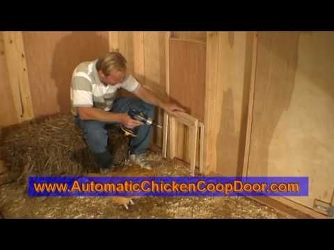 Making a DIY automatic chicken coop door, especially if you work, makes taking c