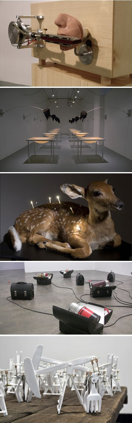 Best Kinetic Sculpture Images On Pinterest Beautiful Places - Mechanical kinetic sculptures bob potts inspired animals