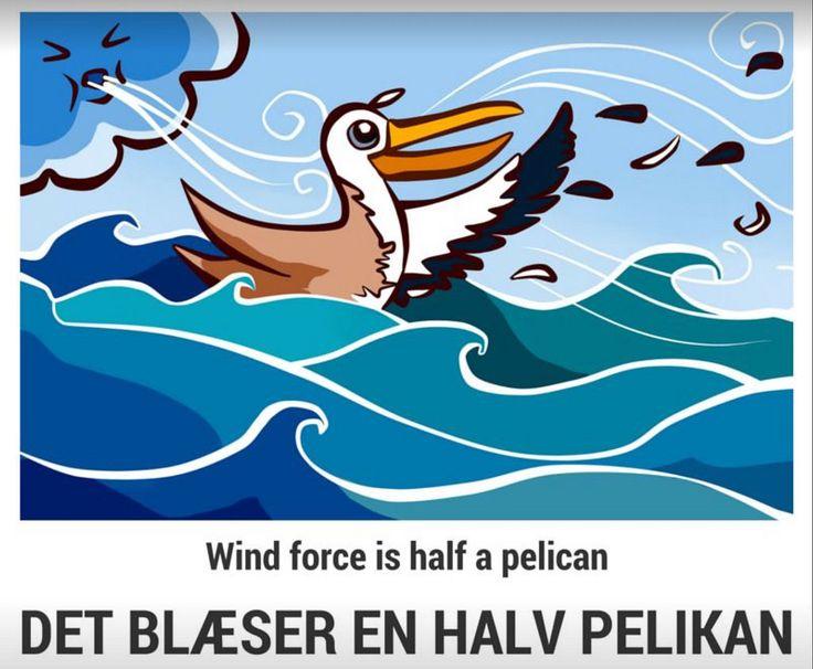 (2016-06) Det blæser en halv pelikan