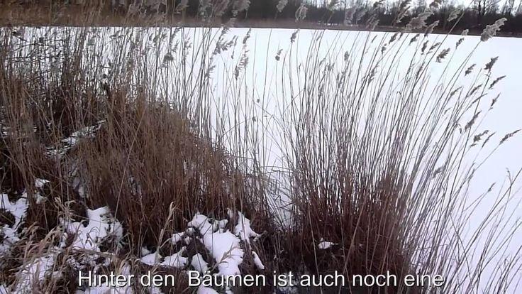 13 Hektar Seeanwesen mit Wohnhaus am Waldesrand -Provisionsfrei