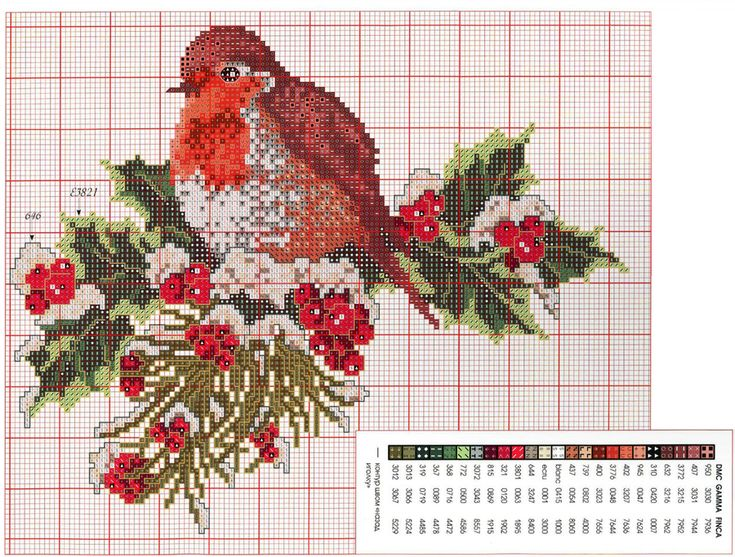 17 Best images about Cross-stitch-birds on Pinterest ...