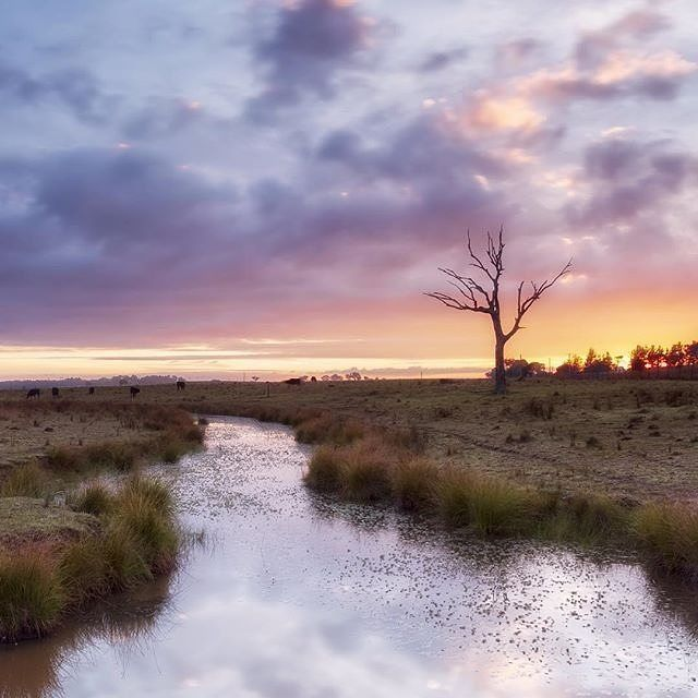 Instagrammer @jharrisonphotos snapped this picturesque sunrise, just a short drive from the National Capital in Gundaroo. From the picture perfect beaches of the coast, to the rural charms of the countryside, Canberra is a great place to base yourself while taking in the best the region has to offer. #visitcanberra #onegoodthingafteranother
