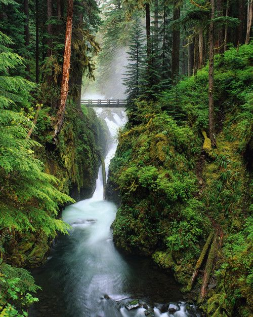 Sol Duc Falls, Olympic National Park, Washington State.