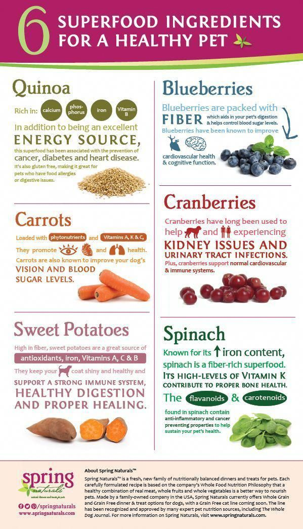 What Are Superfoods Top 25 Superfood Grocery List Ideas Lauren Stickney Health Superfood Diet Superfood Superfoods