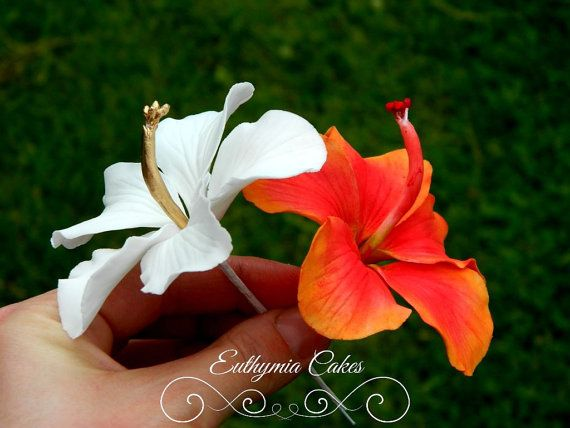 Thank you for stopping by Euthymia Cakes!  This listing is for 1 gum paste hibiscus. It comes with a flower pick for safe attachment to your cake.  Choice of colours If you require a colour that is not listed or a larger quantity, dont hesitate to contact me, I am happy to offer discount for larger quantity.  The flower is about 4 (10cm) in diameter.  You will be notified via email when your order have been shipped. All flowers are made to order and therefore they cannot be returned…