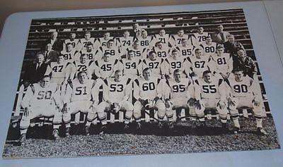 Exquisite & Rare 1956 Calgary Stampeders CFL Original Large Team Photo Poster