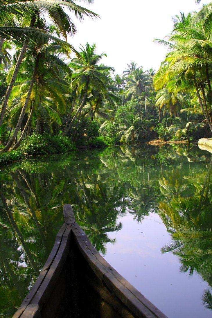 Kerala, India - Gods own land