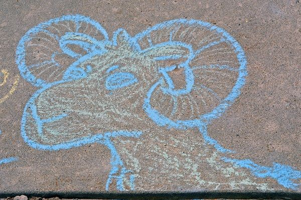 A student artist leaves a rendering of the Pennridge Ram outside Pennridge High School. News-Herald photo — DEBBY HIGH