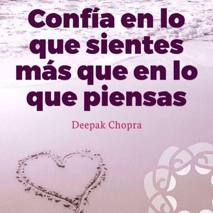Recuerda que donde este tu corazón, allí encontrarás tu tesoro. • ❁ GO! NAMASTE ॐ #yopiensoenpositivo #piensoenpositivo #pienso_en_positivo  #citas #hooponopono #motivacion #emprendedores #emprende #vive #yoga #felicidad #publicidad #namaste #love #smile #happy #go  @by.piensoenpositivo . 🔝Compártela Etiqueta a Otros🔝 PIENSA EN POSITIVO VIVE EN POSITIVO