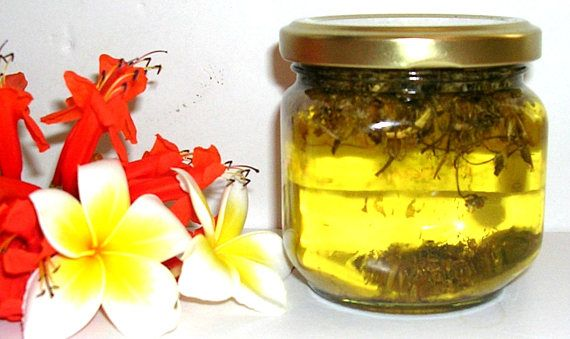 Chamomile Oil for Cellulite Smooth Scars Chamomile Oil Nail