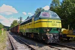 . Diesellok 5205 wird im Bahnhof Dorinne Durnal vor ein paar Güterwagen gesetzt. 14.08.2017