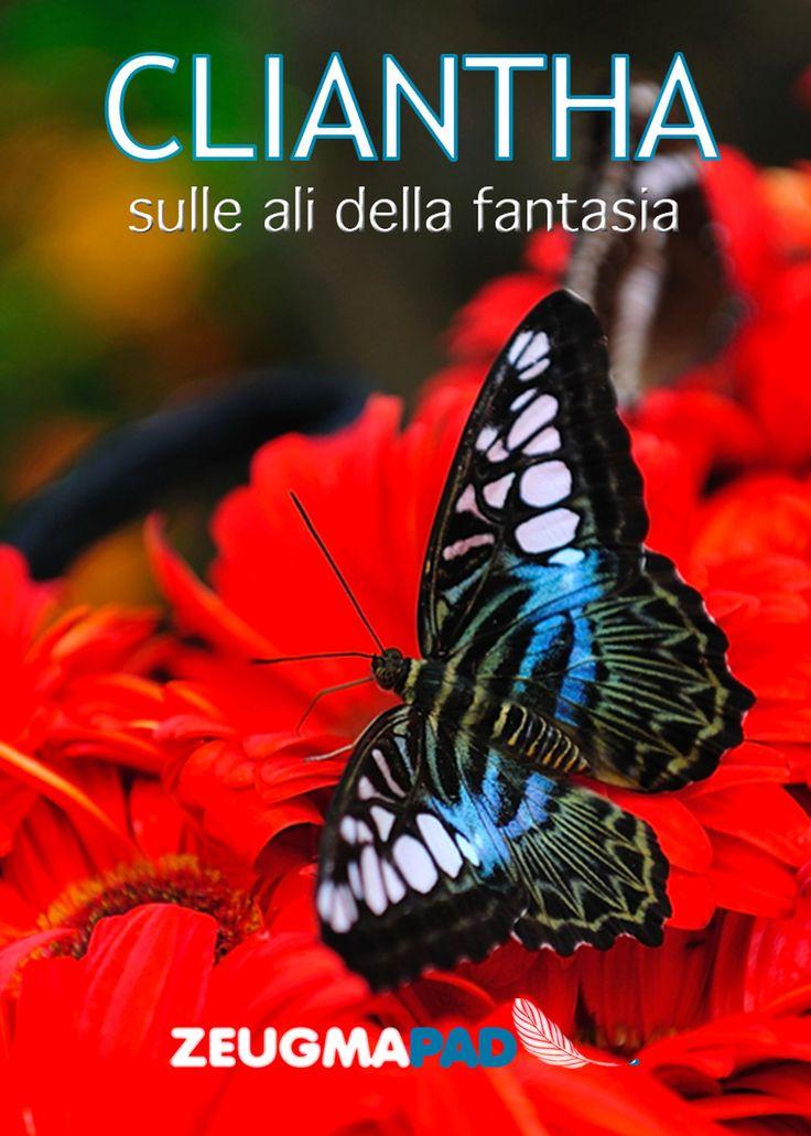 Un fiore, i colori e le ali per volare con la fantasia. Questi i temi di Euthalia, la nostra prima antologia, che ritornano in Cliantha. Cliantha, in greco antico, è il fiore della gloria. L'immagine migliore per incorniciare le opere dei nostri autori, nella seconda raccolta di racconti ZeugmaPad. Ringraziamo tutti i nostri scrittori per aver animato, con le loro storie, il nostro portale e i lettori che hanno applaudito i talenti emergenti.