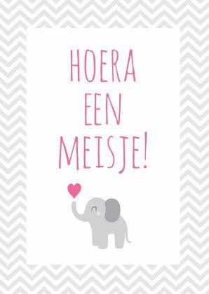 Hoera een meisje, olifantje - Felicitatiekaarten - Kaartje2go