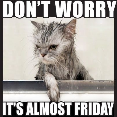 It's almost Friday quotes quote days of the week thursday thursday quotes friday. almost friday