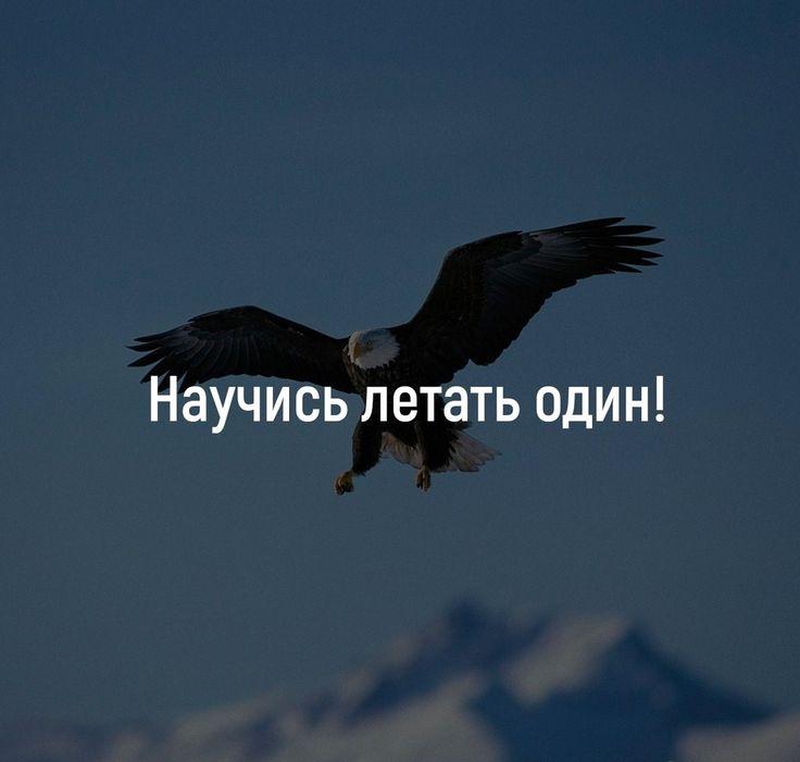 картинки научусь летать