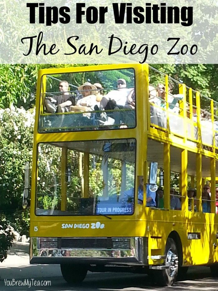 Tips For Visiting The San Diego Zoo - Great helpful ways to save money, see the most of the zoo you can and have the time of your life in downtown San Diego, California!
