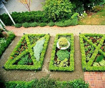 Image Result For English Knot Garden Designs