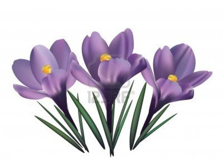bing free clip art flowers - photo #17