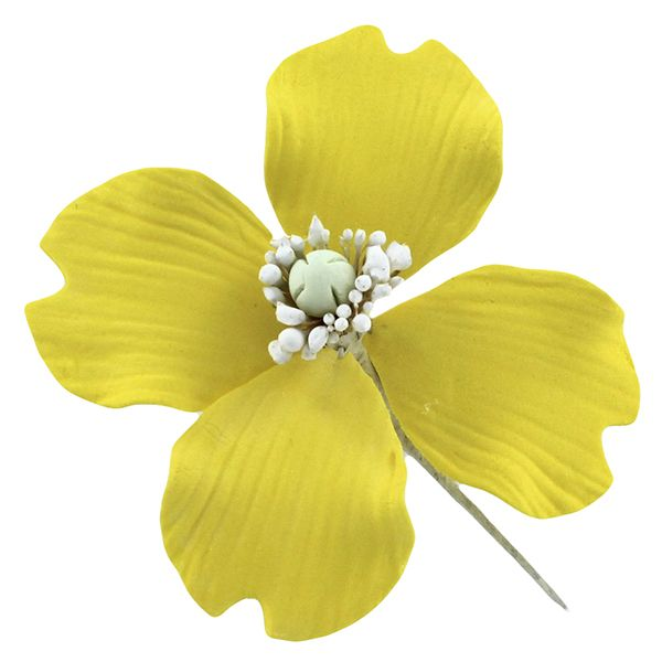Evening Primrose Yellow, 12 Count by Chef Alan Tetreault Sugar Flowers by Chef Alan Tetreault