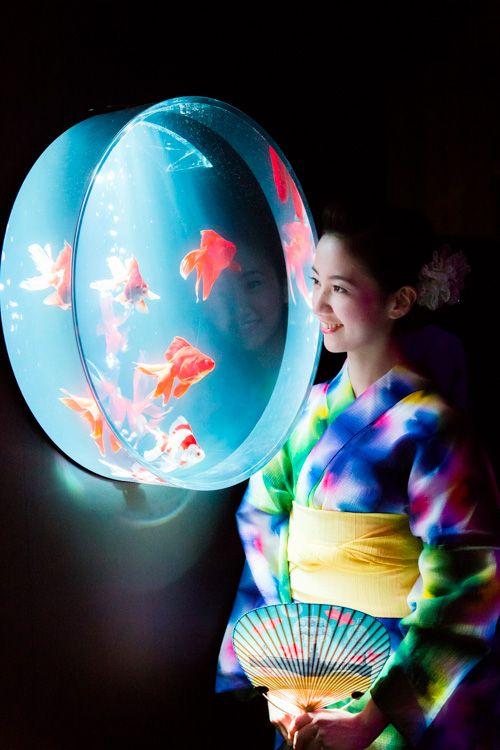 約5000匹の金魚が泳ぐ水中アート「アートアクアリウム2014」開催の写真14