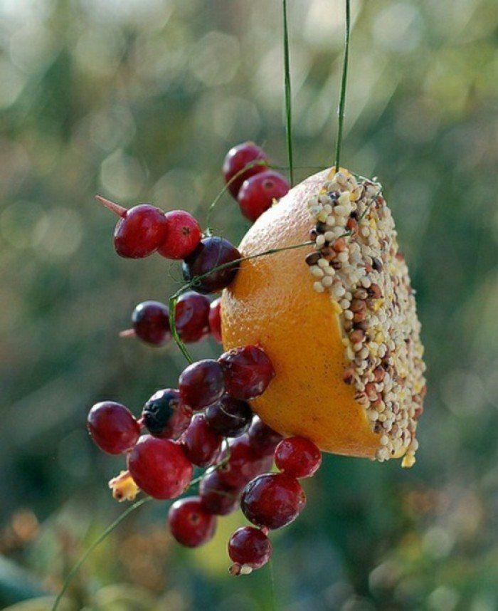 mangeoire oiseaux à l'aide d'un orange et brochettes