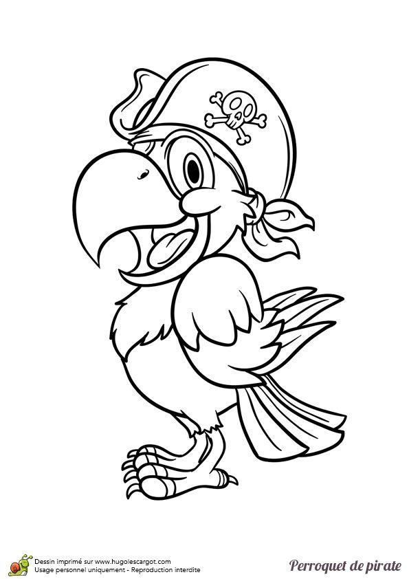 Dessin à colorier d'un perroquet de pirate vu de profil - Hugolescargot.com